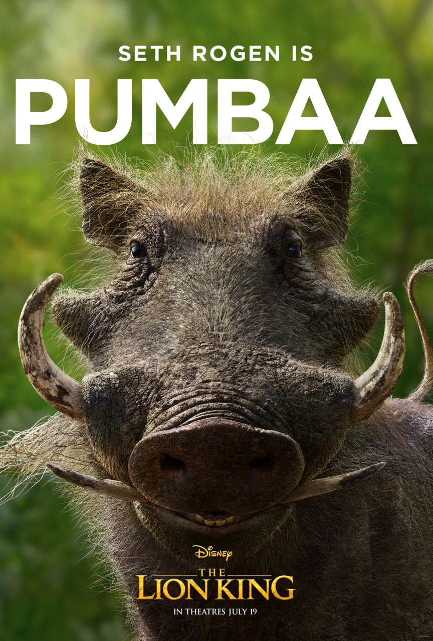 The Lion King Character Poster 03 - Seth Rogen Is Pumba